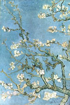 Monet suffered with cataracts. In 1923 he had surgery to remove them from his eyes. The works he painted when he had cataracts are more red than the ones he painted after his operation. That said, I think these apple blossoms were painted by Van Gogh. Monet Paintings, Van Gogh Paintings, Impressionist Paintings, Impressionism Art, Claude Monet, Vincent Van Gogh, Van Gogh Wallpaper, Monet Wallpaper, Artist Monet