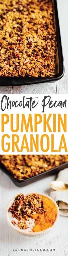 Chocolate Pecan Pumpkin Granola // Vegan + Gluten-free