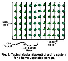 Efficient Use of Water in the Garden / Benefits of a drip irrigation system.  Article is extremely long, but full of quality information.