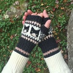 Ravelry: Curious Cats pattern by Fiona Alice