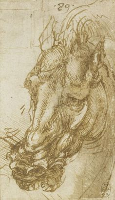Leonardo da Vinci, 1452-1519, Italian, The head of a horse, c.1503-4. Pen and ink with wash. Royal Collection Trust, Windsor. High Renaissance.