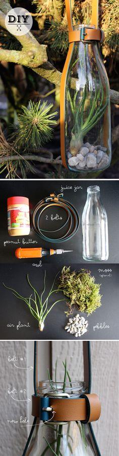 DIY - Hanging belt vessel (terrarium/lantern) | poppytalk