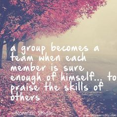 Teamwork quotes for business leaders Cheer Leaders                                                                                                                                                      More