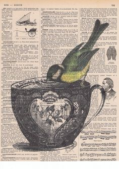 Bird on a Teacup Repurposed antique book pages with vintage illustrations
