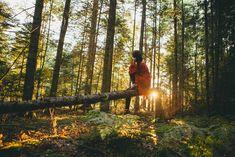 Metsällä on elvyttävä vaikutus hyvinvointiimme silloinkin, kun emme tiedosta vaikutusta itse. Hyvän olon kokemus syntyy näistä 7 asiasta.