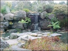 ANBG rock garden Canberra - fee $300
