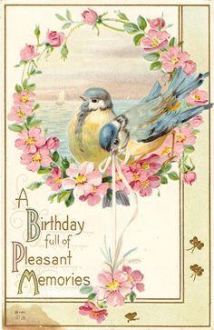 1000 images about vintage greeting cards on pinterest for Vintage geburtskarten