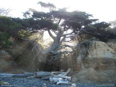 fighting erosion - standing firm