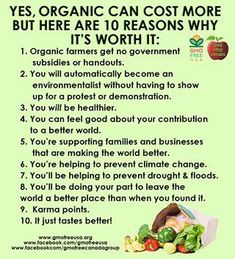 Organic food might be a little more expensive but you are supporting farmers who deserve it! Go organic! Organic Lifestyle, Healthy Lifestyle, Organic Recipes, Raw Food Recipes, Food Tips, Healthy Recipes, Health And Nutrition, Health And Wellness, Health Facts