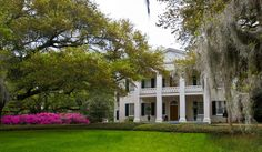 Monmouth Plantation....Lovely place to stay in Natchez.