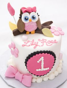 The Crimson Cake  Baby Girl Owl Smash
