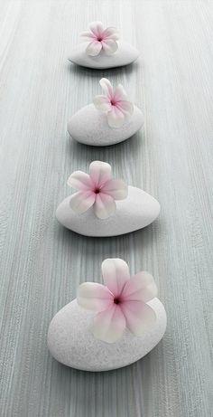 Frangipani Flower On White Stone, Zen Spa On White Wood Stock Photo, Picture And Royalty Free Image. Zen Wallpaper, Flower Wallpaper, Feng Shui Wallpaper, Zen Pictures, Canvas Pictures, Flower Petals, Pink Flowers, Vinyl Panels, White Stone