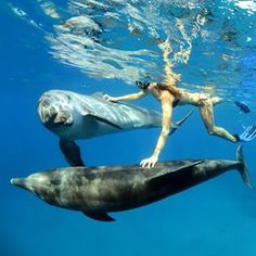 Freediving... with friends...