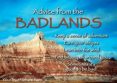 Sometimes it's good to be bad! Advice from Badlands National Park- Your True Nature. Animal Spirit Guides, Spirit Animal, Advice Quotes, Wisdom Quotes, Quotable Quotes, Qoutes, Good Advice For Life, Life Advice, Purple Color Meaning