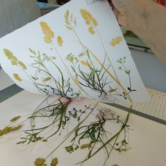 2016 topic 9 mono printing challenge is part of Monoprint - 2016 Topic 9 Mono Printing Challenge artIdeas Flowers Art Et Nature, Nature Prints, Art Prints, Art Floral, Flower Prints, Flower Art, Art Flowers, Plant Drawing, Drawing Flowers