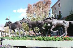 Horses Sculpture in Downtown Scottsdale - Scottsdale, Arizona (AZ ...