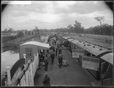 Horses are entrained at Belmont Railway Station for their journey to Kalgoorlie, August 1912 Wa Gov, Western Australia, Trains, Journey, Horses, Outdoor, Image, Outdoors, The Journey