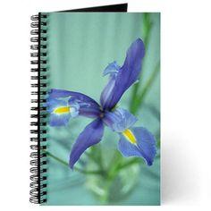 Awaken Purple Iris Flower Photo Journal Iris Flowers Iris Flower Photos Purple Iris