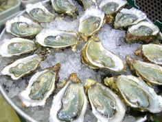 Wellfleet Oysters....Is there anything more delicious?