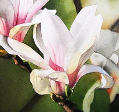 """Magnolia at Sunset"" - by Jacqueline Gnott Watercolor Projects, Watercolour Painting, Watercolor Flowers, Watercolors, Flora Flowers, Whimsical Art, Flower Art, Art Flowers, Botanical Prints"