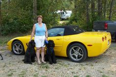 Camping near Stony Plain Alberta. Stony, Poodles, Bmw, Camping, Vehicles, Campsite, Standard Poodles, Poodle, Car