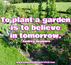 To plant a garden is to believe in tomorrow.  More info here:  http://homesteadingsurvival.com/to-plant-a-garden-is-to-believe-in-tomorrow/
