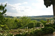 This bedroom villa in Todi, Perugia, Umbria is now on the market. Fruit Garden, Herb Garden, 8 Bedroom Villa, Jacuzzi Bath, Entrance Hall, Maine House, Countryside, Gazebo, Knight