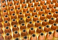 Washington still sucking up ammo supplies | WND
