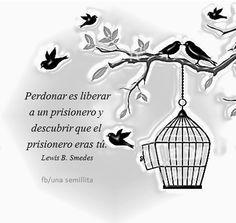perdonar es liberar..