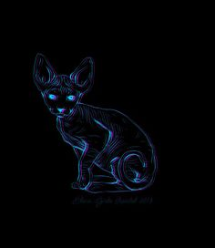 The Cat on Behance
