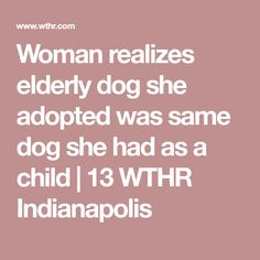 Woman realizes elderly dog she adopted was same dog she had as a child Awesome Stories, Adoption, Woman, Children, Dogs, Infants, Kids, Doggies, Big Kids