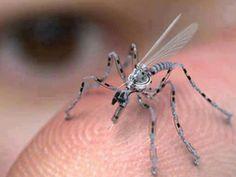 Spy Drones - no insect spray needed