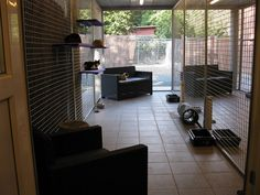 Foto's | Kattenhotel | Hof Ter Linden Divider, Patio, Outdoor Decor, Furniture, Home Decor, Pictures, Decoration Home, Room Decor, Home Furnishings