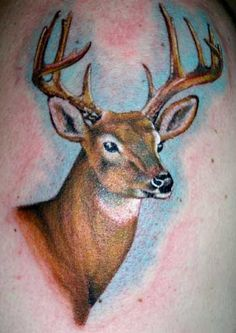 realistic deer tattoos - want something like this in memory of my pap.. but maybe using a bigger thicker buck lol