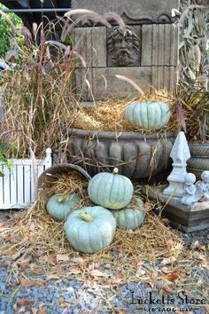 I must try painting pumpkins!