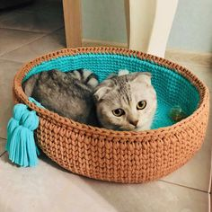 Discover recipes, home ideas, style inspiration and other ideas to try. Gato Crochet, Crochet Headband Free, Cat Basket, Popular Crochet, Knitted Cat, Pet Dogs, Pets, Cool Dog Beds, Dog Bag