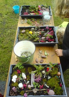 Making miniature gardens.