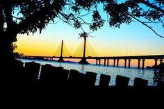 Ponte Anita Garibaldi iluminada