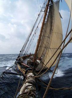 Sails.