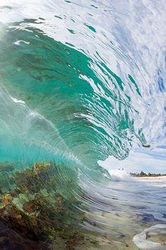 wavemotions: Aquatic Elements by Warren Keelan