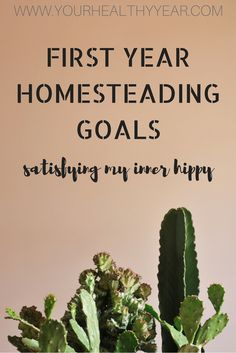 Check out my First Year Homesteading Goals and maybe give me a few pointers! I'm just starting with this new journey, I could use it!