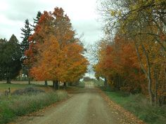 Country drive on a beautiful fall day....