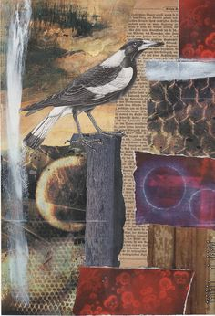 Danielle Maret COLLAGE and a Victorian assemblage look Mixed Media Collage, Collage Art, Photocollage, Assemblage Art, Birds Of Prey, Art Journal Inspiration, Mail Art, Bird Art, Art Techniques