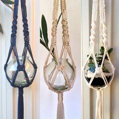 EdenEve Macramé plant hangers