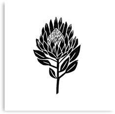 'Linocut Protea floral black and white minimal flower spring ' by monooprints - Modern Protea Art, Protea Flower, Tattoos Mandala, Tattoos Geometric, Flower Tattoos, Lino Art, Linoleum Block Printing, Wrist Tattoos For Guys, Australian Native Flowers