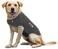 Thundershirt - $39.95 // even Sara's crazy dog might wear this.