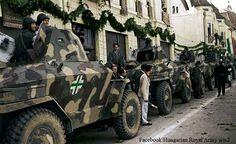 Csaba armoured cars at rest