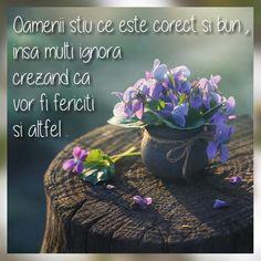 True Words, Qoutes, Plants, Beautiful, Quotes, Quotations, Plant, Quote, Shut Up Quotes