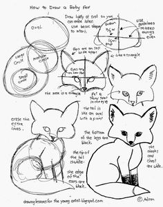 How to Draw A Baby Fox Worksheet. See more at my blog: http://drawinglessonsfortheyoungartist.blogspot.com/2015/05/how-to-draw-baby-fox-worksheet-free.html