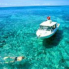 Discover wreck diving and snorkeling on North America's only living coral reef. Marathon Florida Keys, Fl Keys, Greatest Adventure, Florida Beaches, Get Outside, Key West, Beach Resorts, Snorkeling, Vacation Spots
